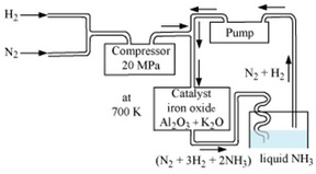 How is ammonia prepared on a large scale name the process andmention haber process can be explained using the following flowchart ccuart Image collections