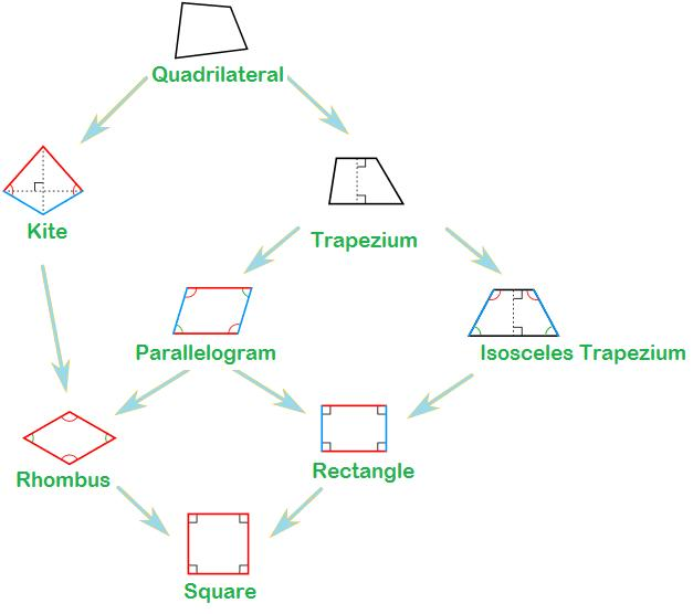 Types of quadrilateral including a tree diagram to show the types we show tree of different type of quadrilateral as ccuart Image collections