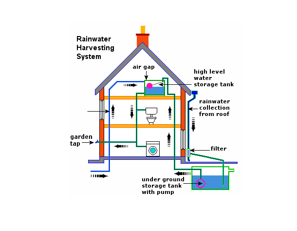 Neat And Well Labelled Diagram Of Rain Water Harvesting Social