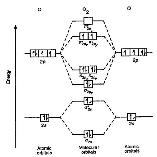 Use Molecular Orbital Theory To Explain Why Oxygen Molecule Is