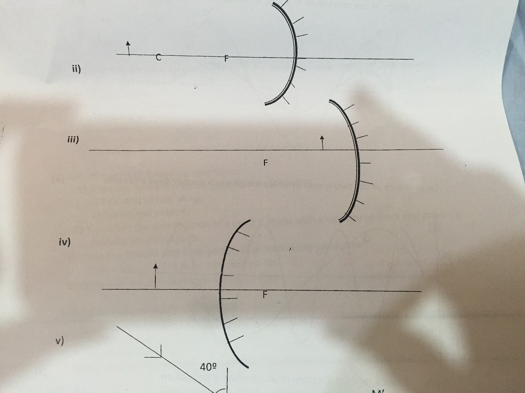 Math Physics Chemistry Questions Discussion Lists Dated 2016 03 17 Diagram Of Germination Seeds Meritnationcom Answer Plz
