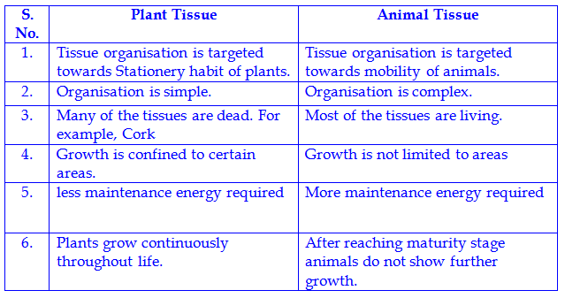 different between the plant tissues and animal tissues ...
