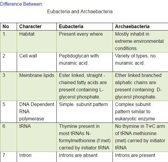 Difference between Archaebacteria and Eubacteria ...
