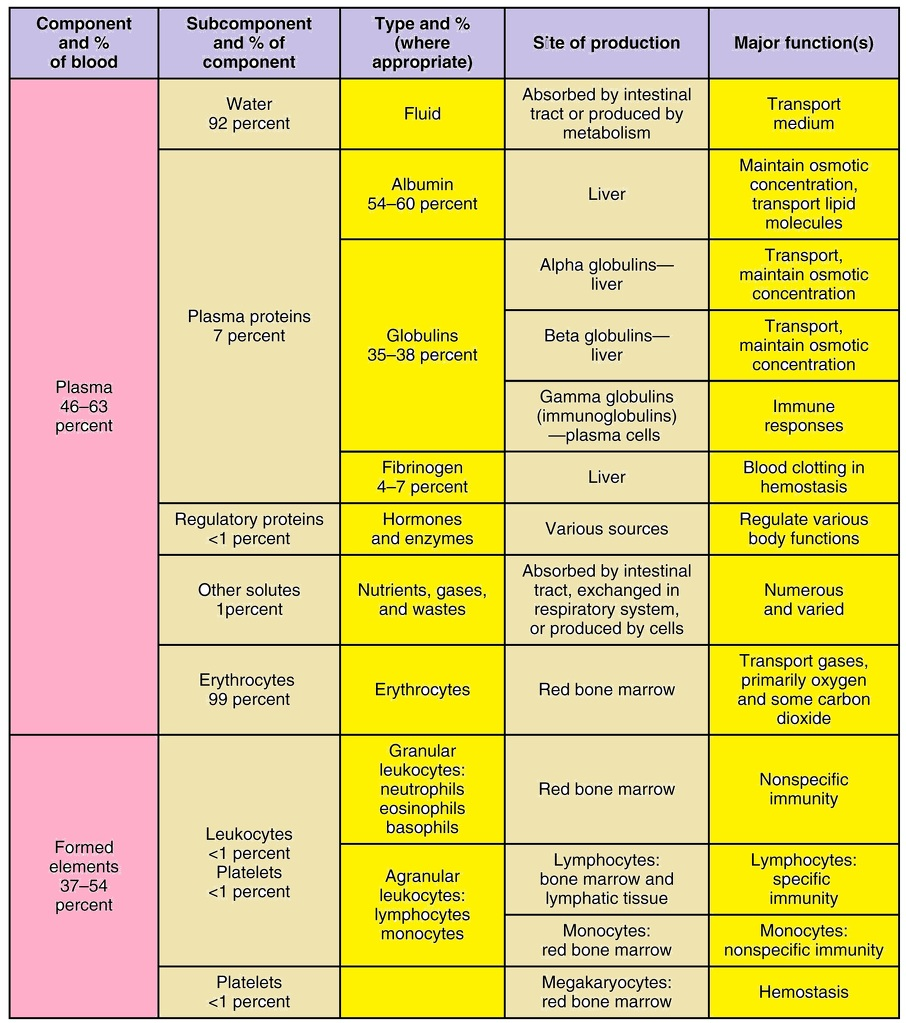 flow chart of components of blood - Science - Tissues ...