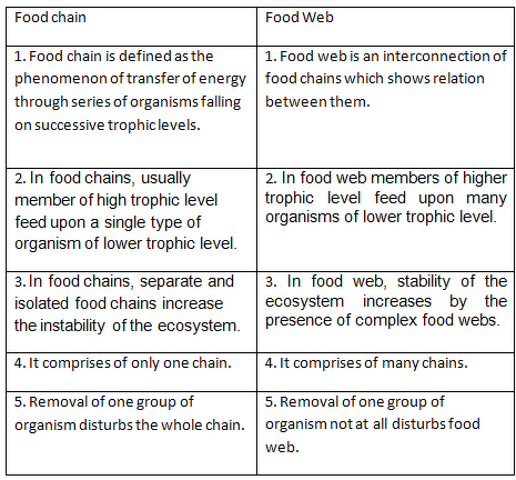 Differentiate A Food Chain From A Food Web