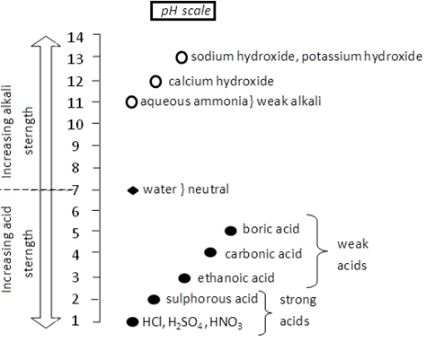 how to draw the ph value table - Science - Finding pH of Different