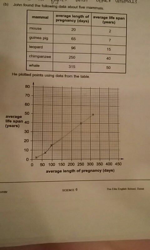 From the graph describe the relationship between the average