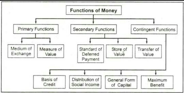 different functions of money