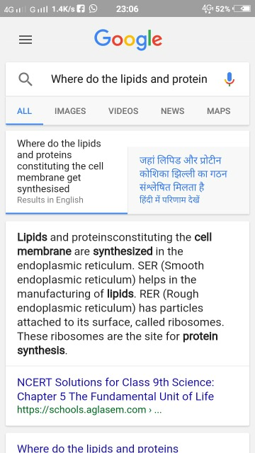 Where do lipids and proteins get synthesised