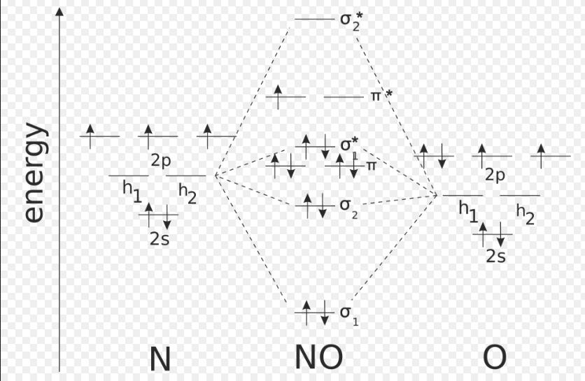 Molecular Orbital Diagram Of No.Molecular Orbital Diagram Of No Chemistry Chemical