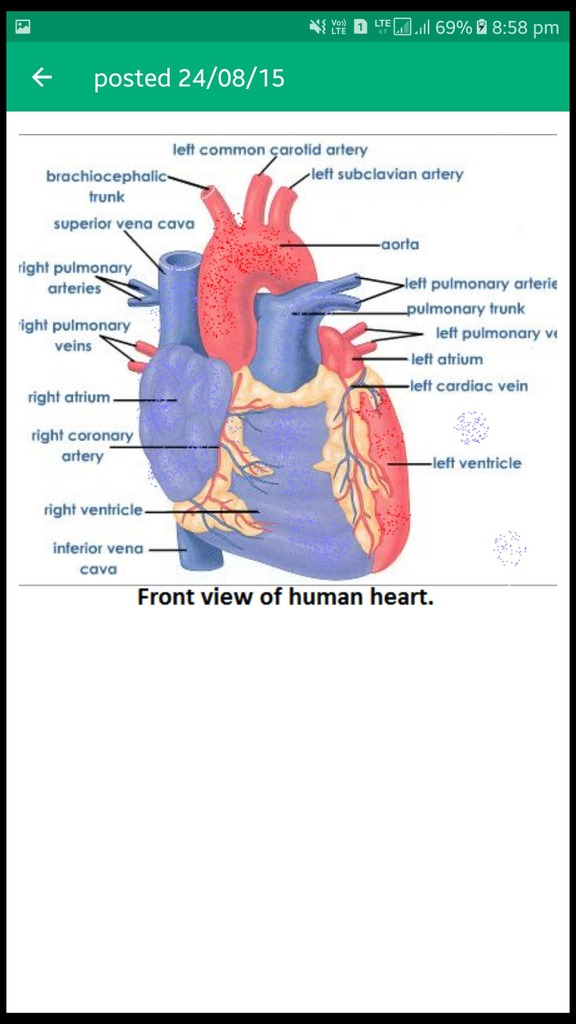 Draw A Diagram Of The Front And Sectional View Of Human Heart And Label Any Six Parts Including