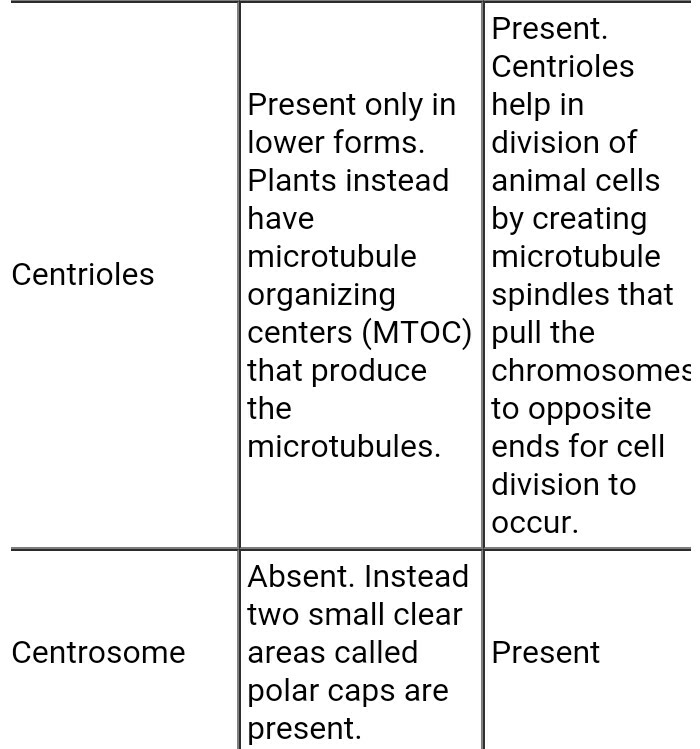 Write 10 differences between plant and animal cells Expert ...