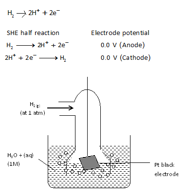 Explain the construction and significance of normal hydrogen when this half cell is connected with any other half cell a voltaic cell is constituted the hydrogen electrode can act as cathode or anode with respect ccuart Gallery