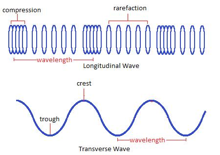 What Is The Meaning Of Tranverse Equivalent Of A