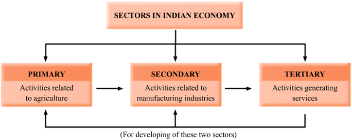 What Are Economic Activities Explain With Suitable Examples