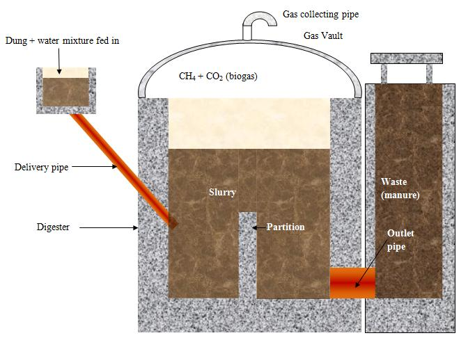 Draw A Labelled Diagram Of Biogas Plant Science 5491157