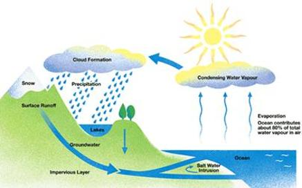 http://www.osovo.com/diagram/water_cycle.gif