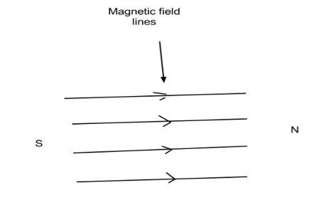 The Magnetic Field In A Given Region Is Uniform Draw A Diagram To