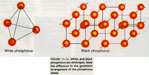 what is the difference between red phosphorus and white ...