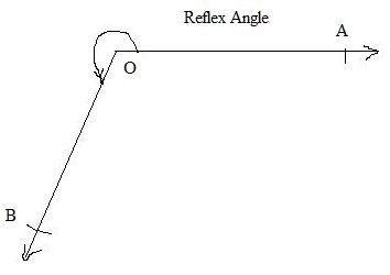 what is a reflex angle - Math - Lines and Angles - 4903482