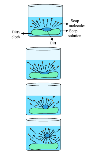 Explain the cleansing action of soap  Science  Carbon