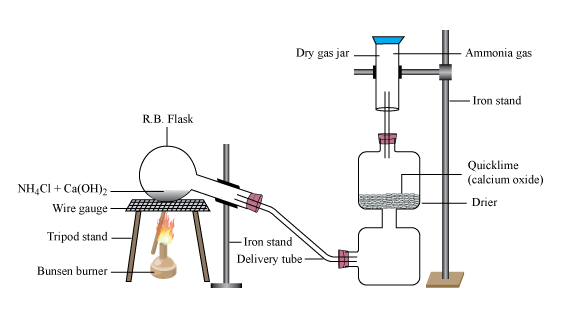 Lab Prepration Of Ammonia Gas Chemistry