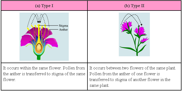 Unisexual and bisexual plants